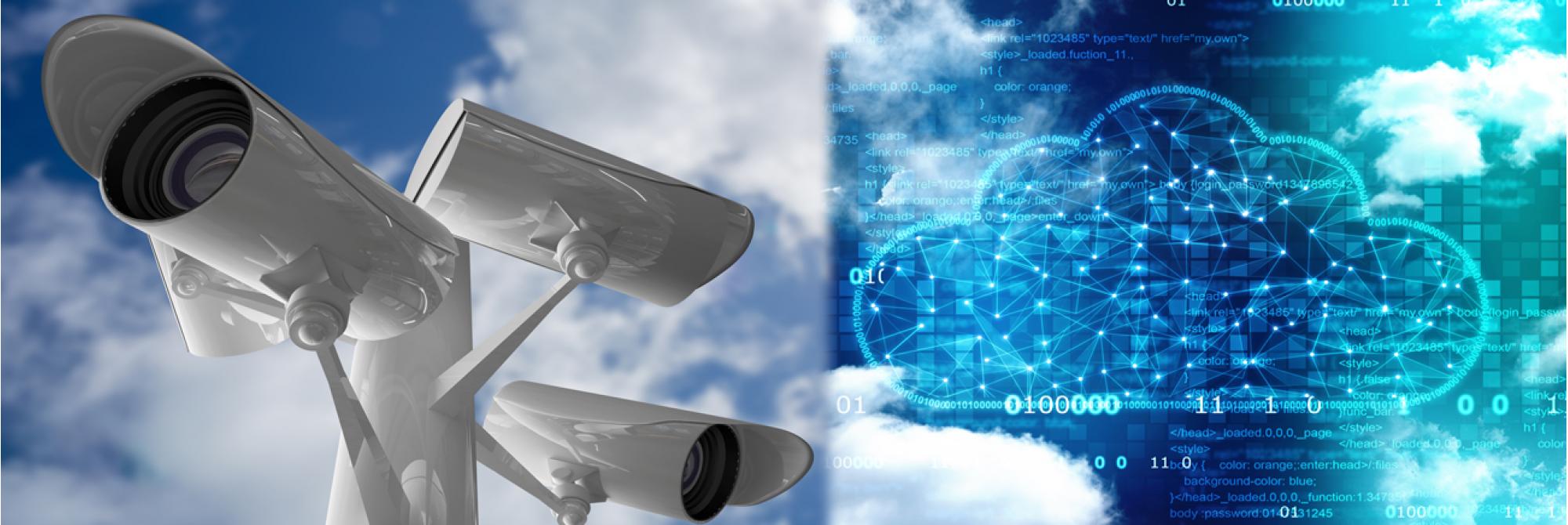 Visec Surveillance Software for IP and analog cameras